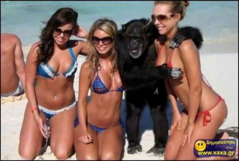Αστείες καλοκαιρινές φωτογραφίες (2)