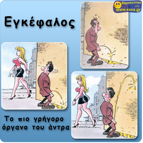 xaxa.gr-egkefalos1.png