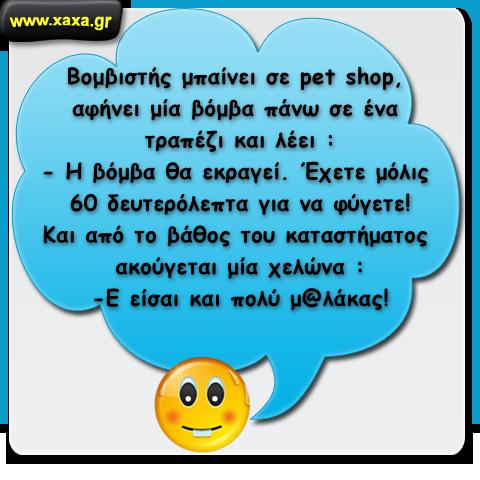 Βομβιστής σε pet shop