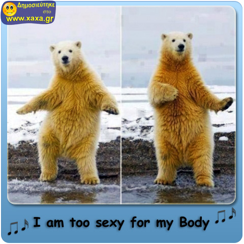 I am too sexy for my Body