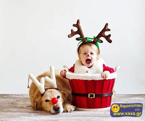 Καλά Χριστούγεννα και καλή χρονία από αυτά τα απίθανα σκυλιά (9)