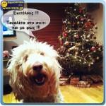 Τα καλά των Χριστουγέννων