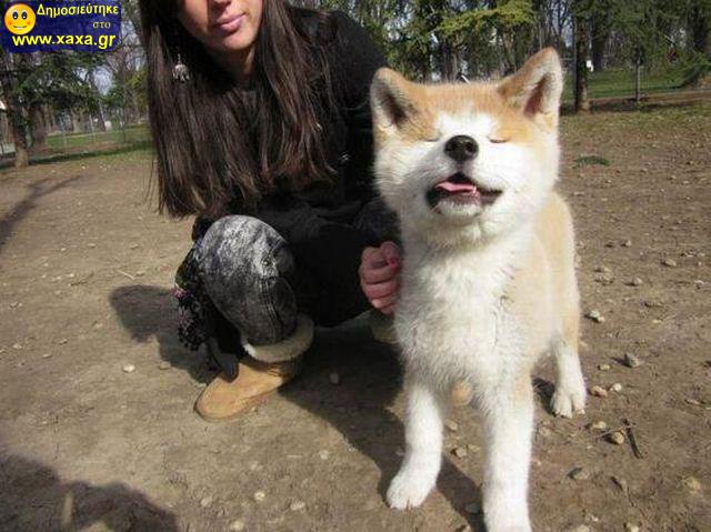 Αστεία απίθανα κατοικίδια και ζώα (11)